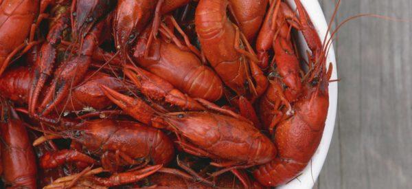 the best crawfish boil recipe