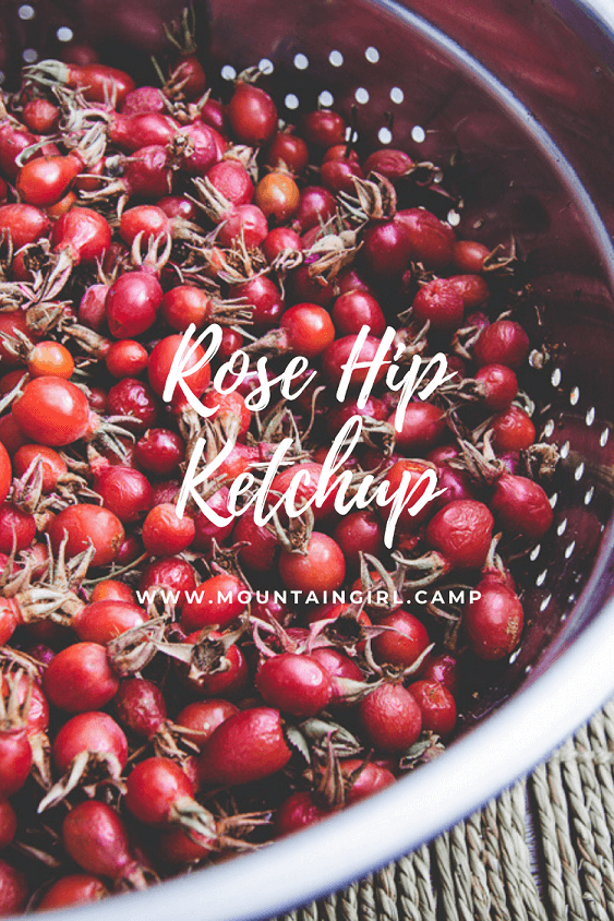 Rose Hip Ketchup